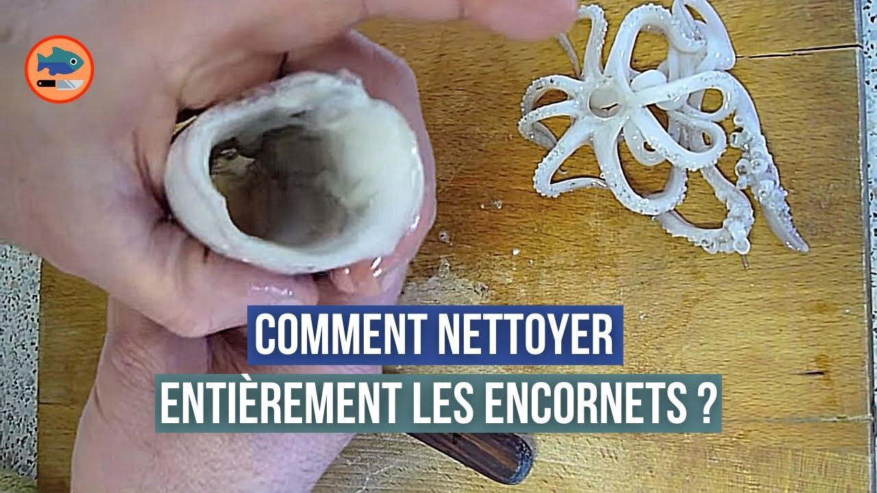 Comment nettoyer les encornets youtube - Comment cuisiner les calamars ...