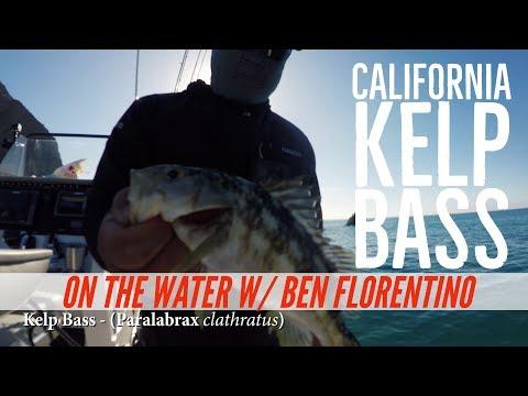 Catalina Calico Bass Fishing with Ben Florentino of Coastal Charters