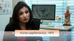 hqdefault - Pimple On Genital Warts