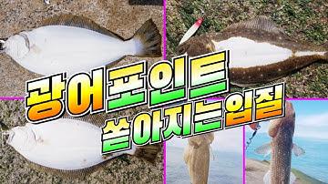 인천 광어 포인트 잘 나옵니다. 자월도 떡바위 광어낚시 flatfish fishing
