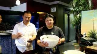 hmong pho challenge part 2 Shoua vs Joshua