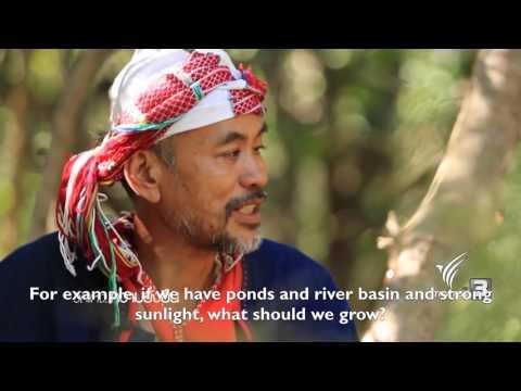 Sahainan Permaculture Farm ThaiPBS Documentary