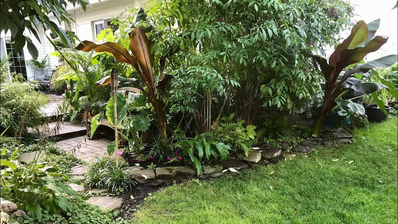 cold climate tropical garden