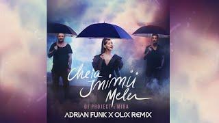 DJ Project X MIRA - Cheia Inimii Mele (Adrian Funk X OLiX Remix)