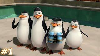 🔴 Пингвины из Мадагаскара 2017!!!!