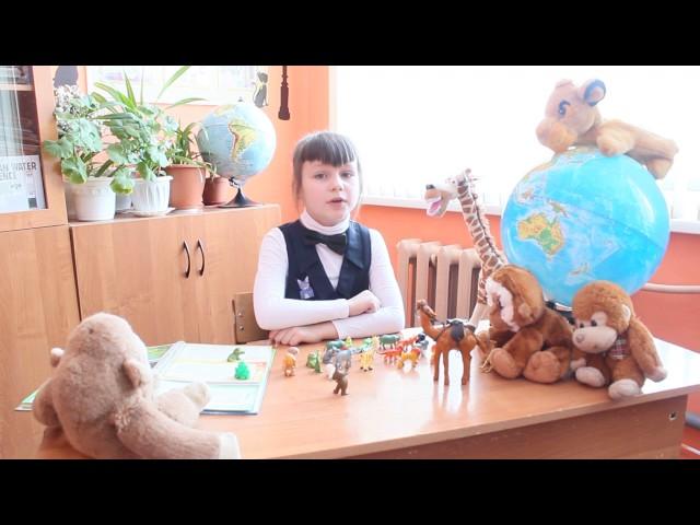 Изображение предпросмотра прочтения – МиланаЛысенко читает произведение «Что ни страница, — то слон, то львица» В.В.Маяковского