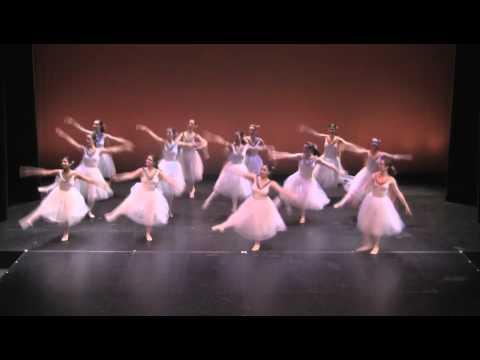 Salto Dance Company--Hedwig's Theme