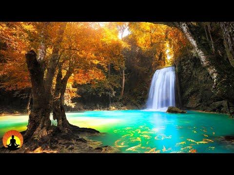 Relaxing  Meditation Healing Sleep  Yoga Spa Calming  Zen Relax Study☯3602