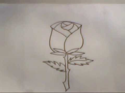 mother and daughter relationship sketches of roses