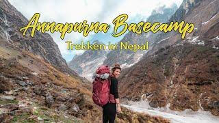 Der BESTE TREK in NEPAL für ANFÄNGER - Guide zum Annapurna Basecamp l Route • Ausrüstung • Kosten