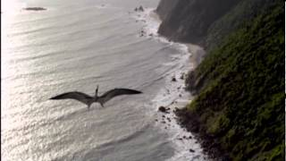 The Long Migration | Walking with Dinosaurs in HQ | BBC
