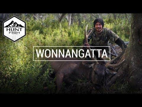 WONNANGATTA - Sambar Hunting The Victorian High Country