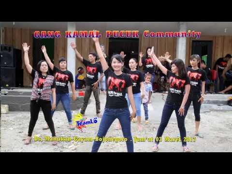 Goyang walang kekek - Indah purnama GANG KAMAL PUCUK Community Manukan - Cah TeamLo Punya