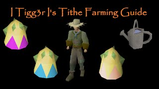 Old School Runescape: I Tigg3r I's - Tithe Farming Guide
