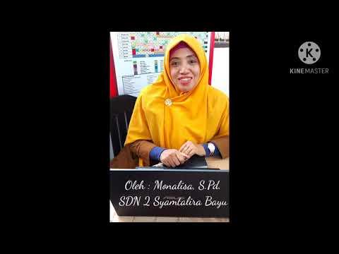Video Pengimbasan Bimtek Asesmen Kompetensi Minimum (AKM) SD Tahap 2