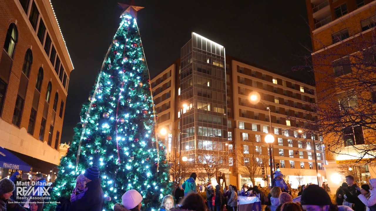Downtown Champaign Tree Lighting
