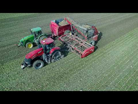 Bernia Family Farms, Inc Sugar Beet Harvest 2016