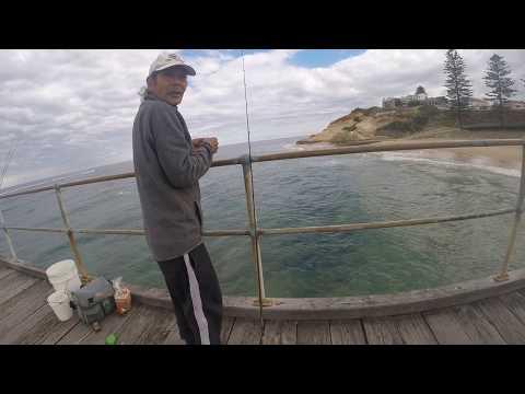 Squid Fishing Port Noarlunga
