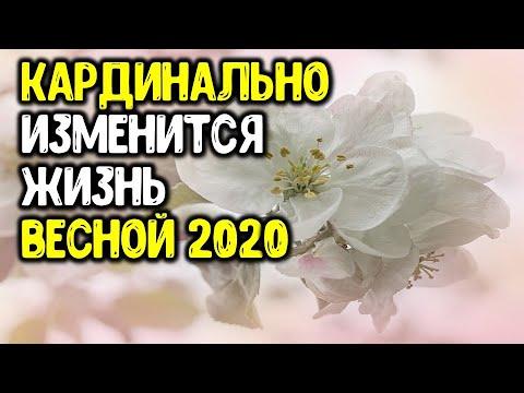 Весна 2020 года кардинально изменит всё в жизни этих знаков зодиака | Астрора