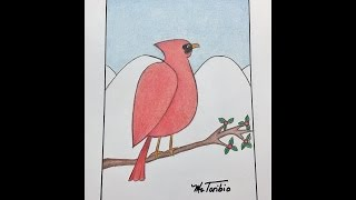 How to draw a Cardinal bird
