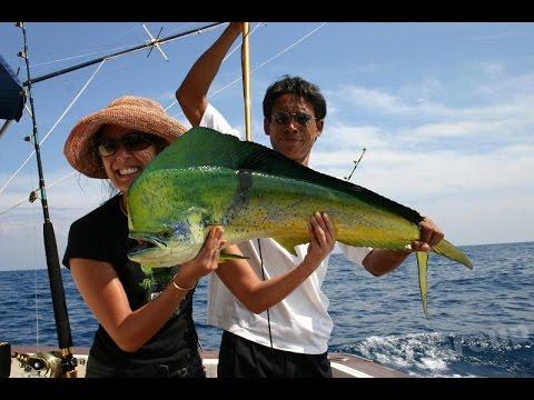 สารคดี ตกปลา ตอน ค้น ปลา ตก ปลา ทะเล