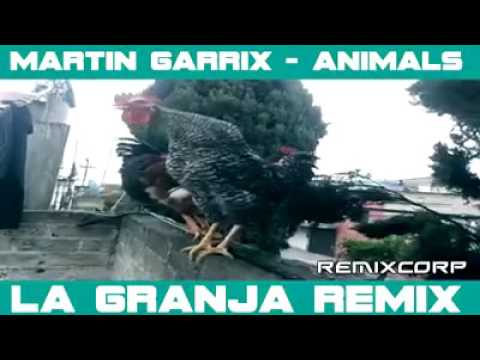 Original Animals Trance - Martin Gerrix