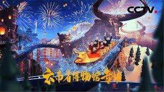 [赢在博物馆第三季]第八期:云南省博物馆专场| CCTV少儿