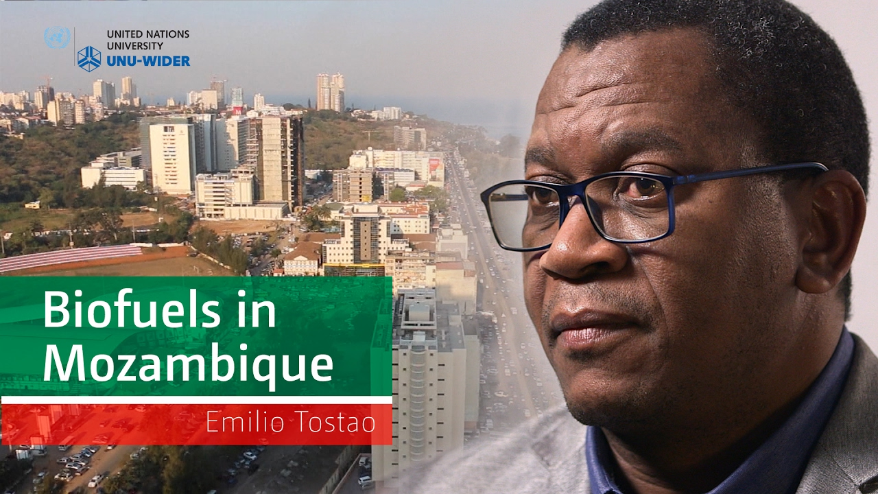 Em­lio Tost£o – Biofuels in Mozambique