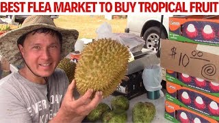 Best Flea Market in the USA to Buy Tropical Fruit I Ever Found