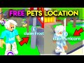 how to get a FREE *FLYING PET POTION* / adopt me - YouTube
