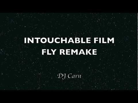 Musique du film Intouchable