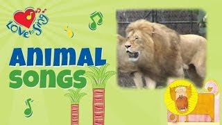 Leo the Lion & Terence the Tiger | Animal Songs for Kids | Children Love to Sing