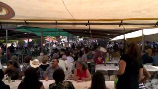 Fiestas de Atoyac Jalisco resibimiento