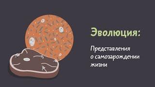 Представления о самозарождении жизни. Естествознание 5.5