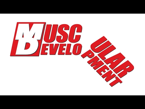 Muscular Development Fallout : Palumbo, Aceto & Romano Respond