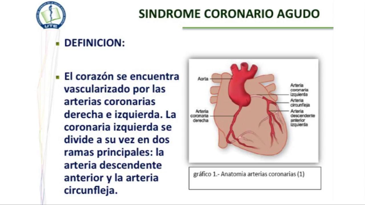 Atractivo Anatomía De La Arteria Coronaria Izquierda Colección ...