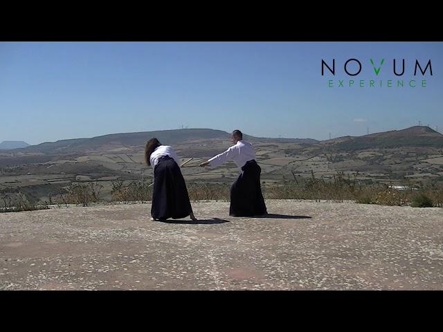 08 Kumi jo hachi - Aikido Novum Experience - Kumi jo Juppon -  組み杖八 - 組み杖十本  - 合氣道 - 合氣杖