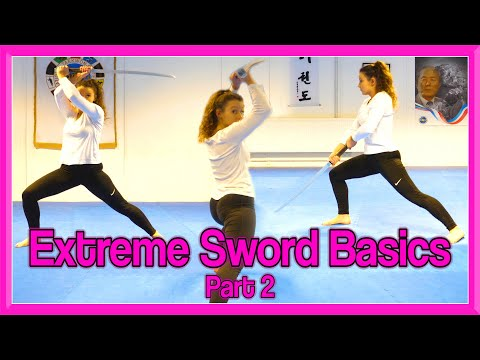 Sword Strikes & Blocks Tutorial | Extreme Sword Basics Part 2