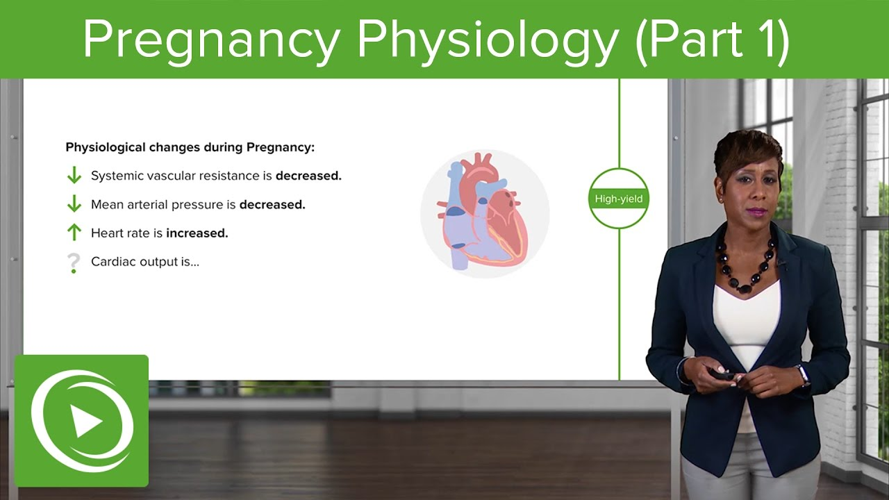 Pregnancy Physiology: Cardiovascular, Hematologic & Respiratory System– Obstetrics  | Lecturio