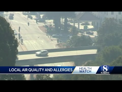 SVMH allergist on air quality