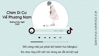 [Vietsub] Chim Di Cư Bay Về Phương Nam - Đường Trác Nghi ZOET   候鳥南飛 - 唐焯儀ZOET