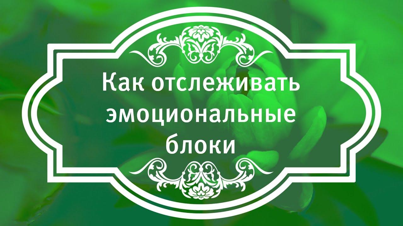 Екатерина Андреева - Как отслеживать эмоциональные блоки.