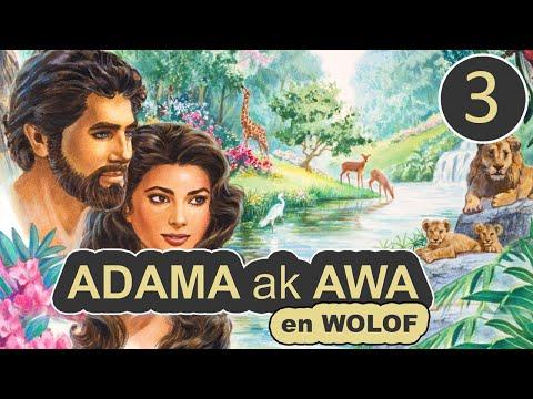 ADAMA ak AWA - Partie 3 | Jeff ☑️
