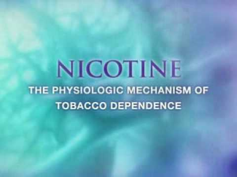 Visualization award winner in Science – Nicotine addiction and molecule diffusion