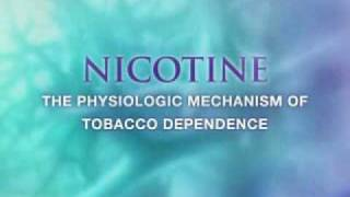 Visualization award winner in Science - Nicotine addiction and molecule diffusion