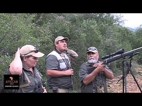 African Hope Hunting Safaris. Cape Kudu
