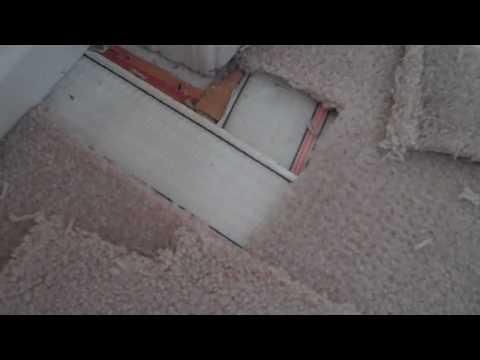 Carpet Repair Damage Caused By A Cat