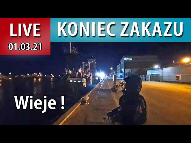 LIVE ➤ Port Łowimy Sandacze