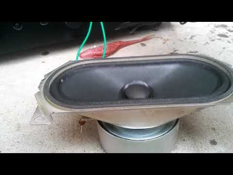 Speaker blowout with new amp