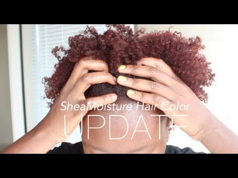 SheaMoisture Hair Color UPDATE Bright Auburn On Natural